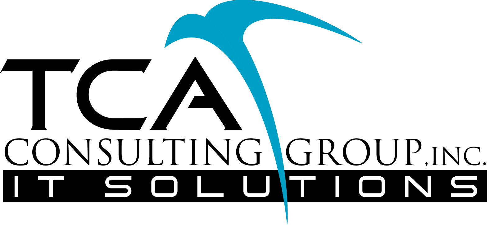 TCA Consulting Group Inc